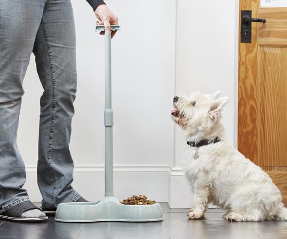 Designed2Enable Pet Food Bowl