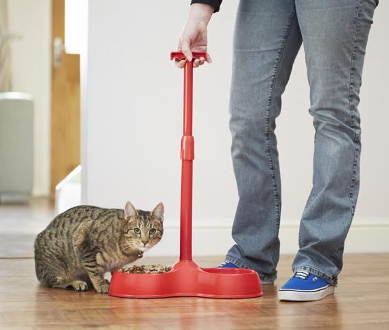 Designed2Enable No Bend Cat Feeder